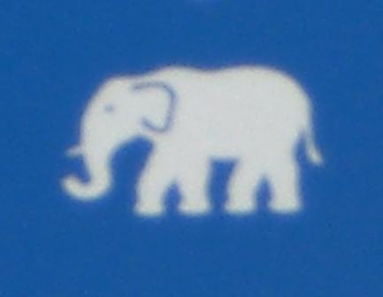 a rescue elephant