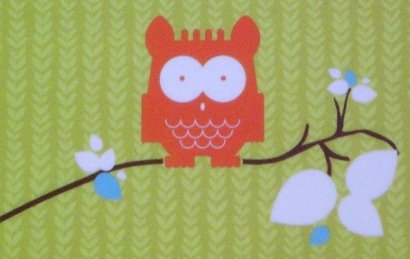 The Owl on branch